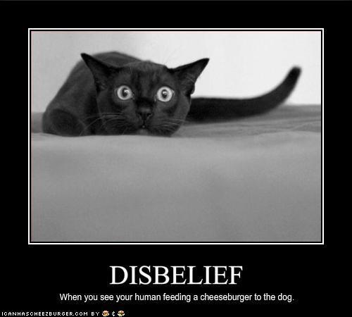 Disbelief.JPG