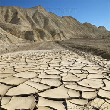Dry.JPG