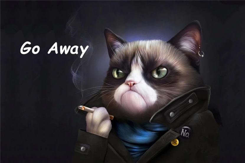 Custom-Grumpy-Cat-Doormat-Angry-Kitty-Door-Mat-Smoking-Black-Mats-Funny-Go-Away-Rugs-Bathroom